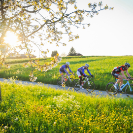 2. MAR Strasse Roggliswil, Mittwoch 04.05.16, Swiss Cycling Luzern, chrisroosfotografie.ch (2016)